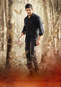 Mahesh Babu photos from Srimanthudu-thumbnail-14