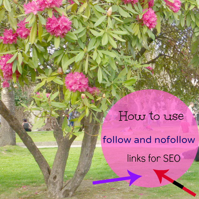Follow and no follow links for SEO purposes