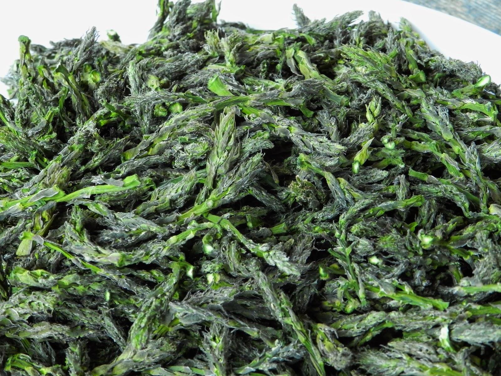 Consorzio asparago Piacenza disidratato