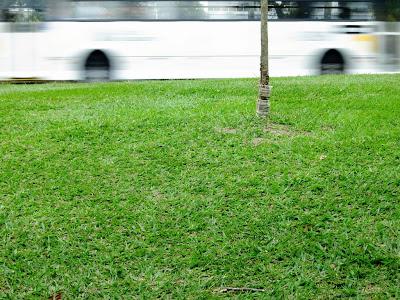 Branco em movimento, by Guillermo Aldaya / PhotoConversa