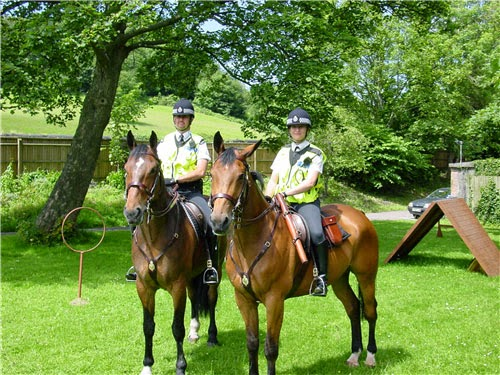 Avon and Somerset Police horses