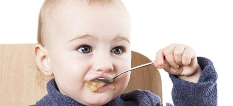 Alimentação do bebé de 12 meses