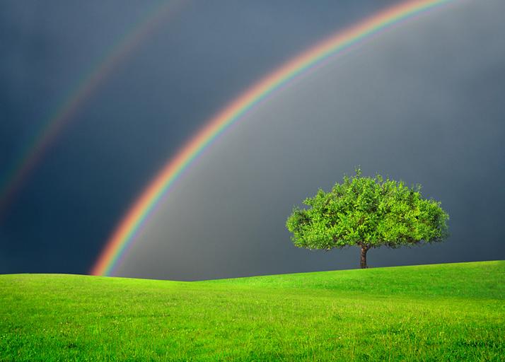 ROGGBIV, de regenboog