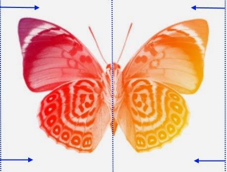 borboleta animada - planeamento