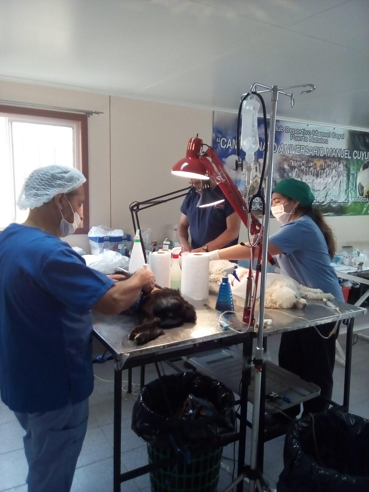 Equipo de esterilizaciones