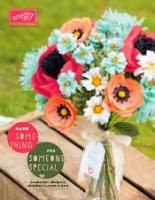 2015 Spring Catalog