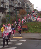 Breast Cancer Walk, Seattle, 2010
