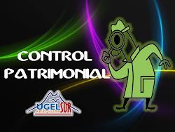 CONTROL PATRIMONIAL 2014