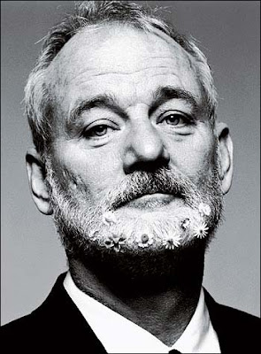 bill murray celebridades fotos
