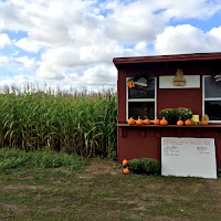 New England Fall Events_Nessralla Farms Halifaz MA_ Corn Maze