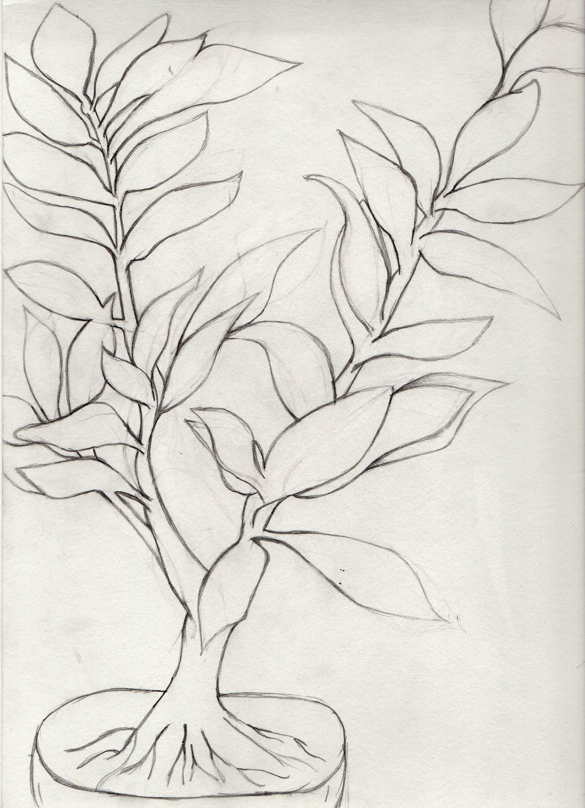 Contour Line Drawing Of A Plant : Deconstructing visual arts
