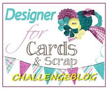 Ik was designer voor: