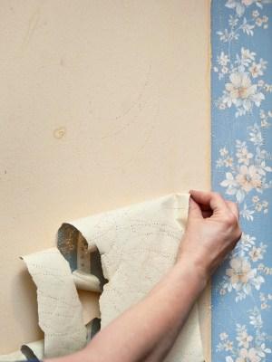 Craig W Clough Wallpaper Stripping In Rock Island IL 61201