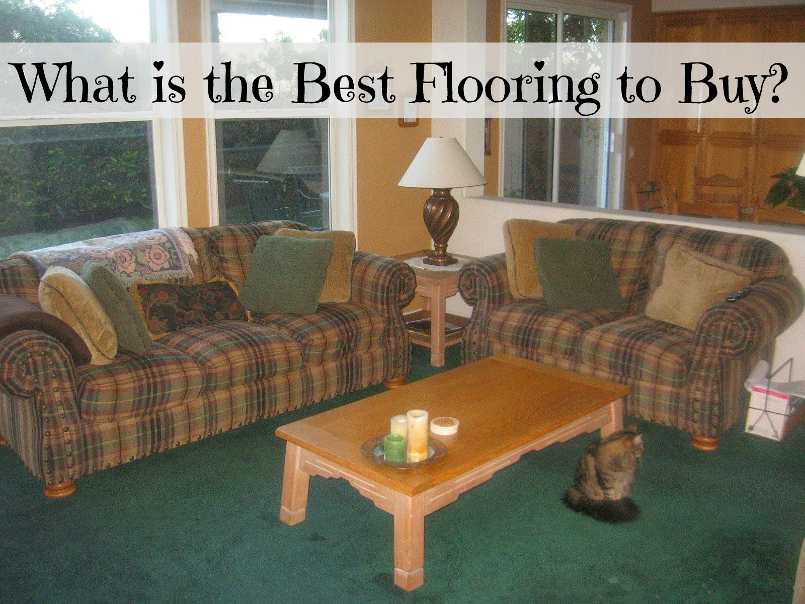 What is the best carpet to buy - What Is The Best Flooring To Buy