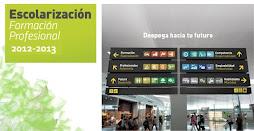 ESCOLARIZACIÓN FORMACIÓN PROFESIONAL 2012/13