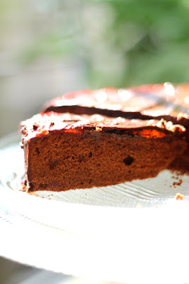 cake with apricot glaze and chocolate frosting