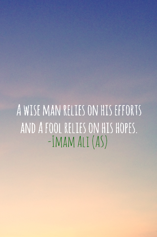 A WISE MAN RELIES ON HIS EFFORTS AND A FOOL RELIES ON HIS HOPES.