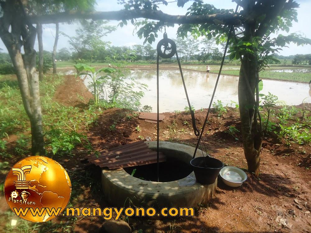 Sumur timba di kebun keluarga. Foto jepretan admin.