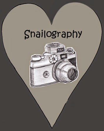 Snailography