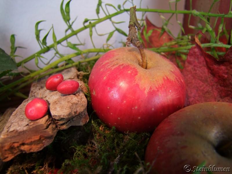 herbstdeko mit Äpfeln