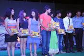 Nenu Naa Friends Audio Platinum disk-thumbnail-6