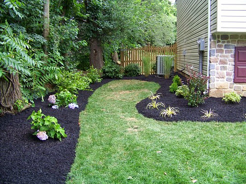 Creating A Healthy Home With Green Backyard