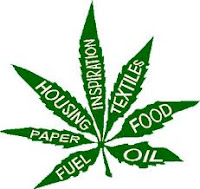 Informasi tentang fumayin cannabis sativa var