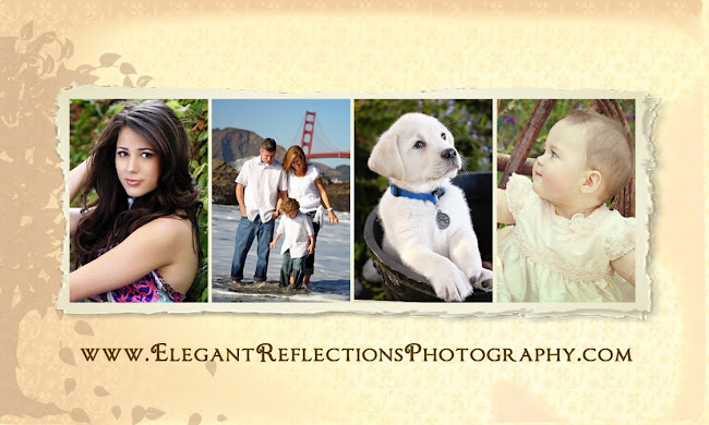 Elegant Reflections Photography and Design