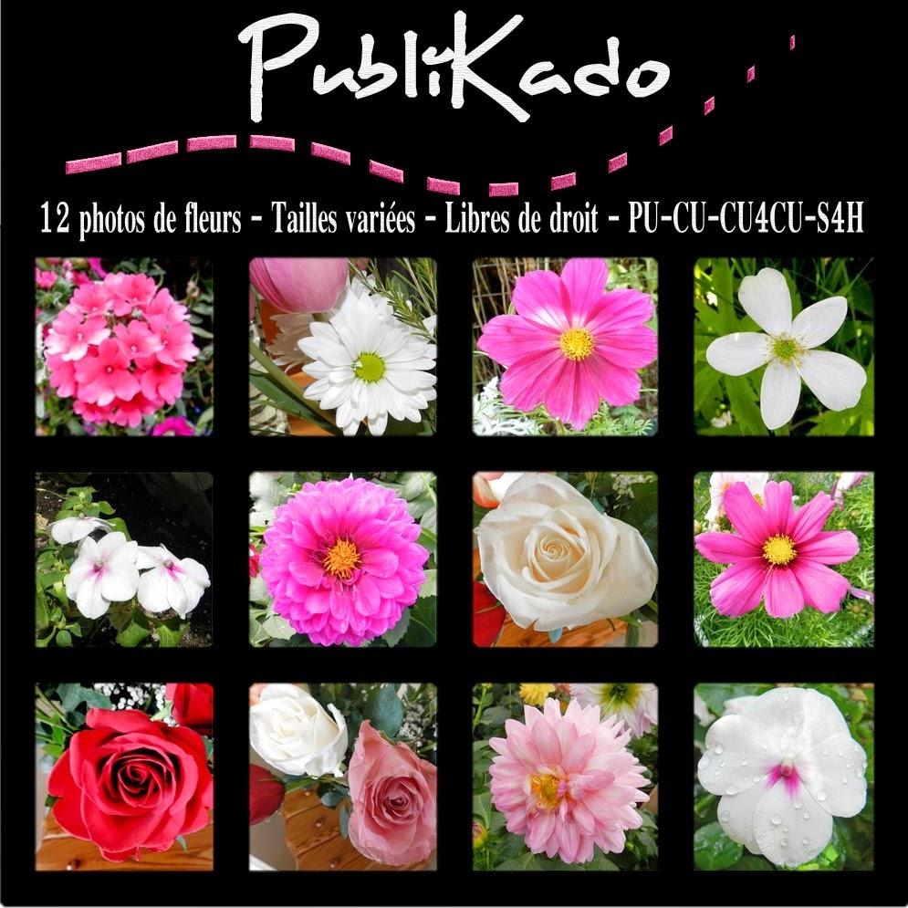 http://1.bp.blogspot.com/-z_CpurWXebc/U96IxY7__bI/AAAAAAAAM6M/ylgpSGzVo5s/s1600/Photos+de+fleurs+-+Pack+%23+3+PREVIEW.jpg