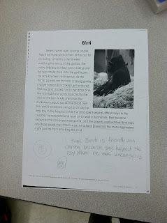 photo of summarizing teaching with style