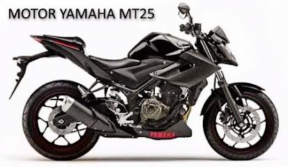 Motor Yamaha MT25 a.k.a Yamaha R25 Versi Naked