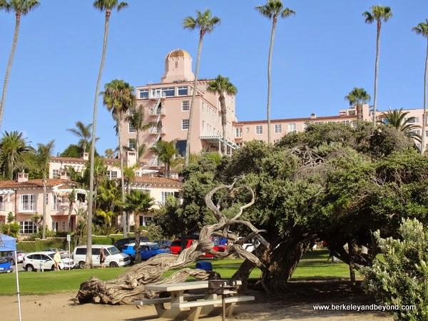 Ellen Browning Scripps Park in La Jolla, California