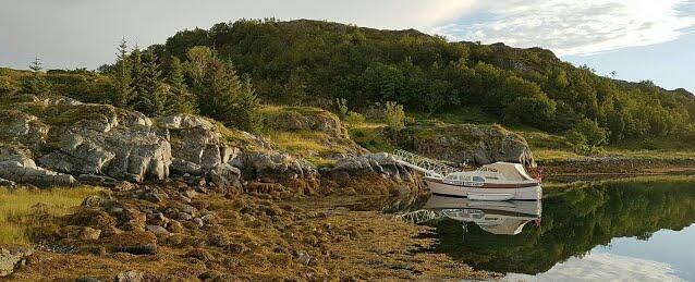 Sjølvelive i Hjartøyvågen