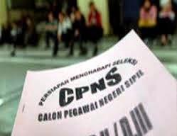 Lowongan CPNS 2014, Pendaftaran Seleksi Direncanakan Akhir Agustus