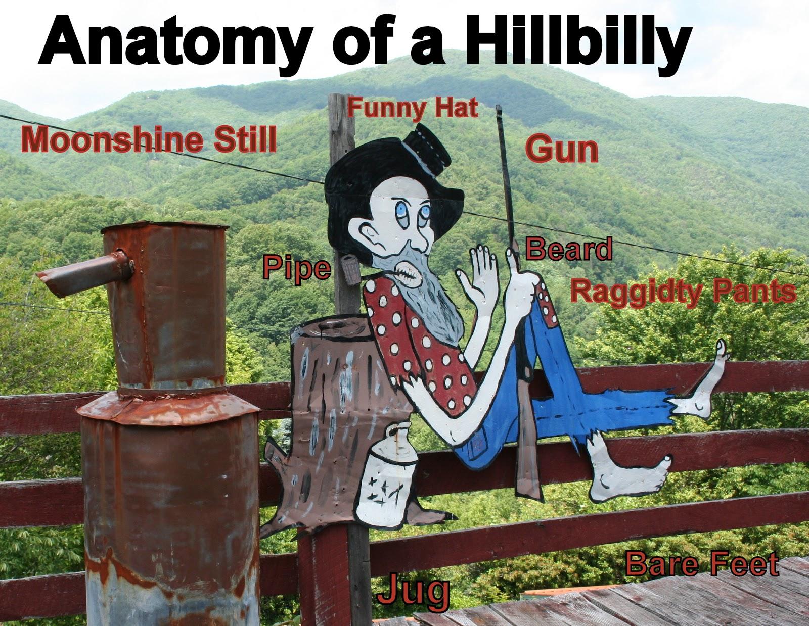 the carpetbagger the hillbilly