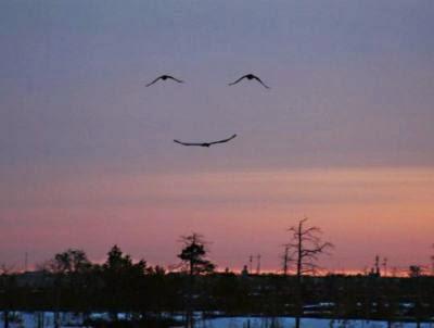 Cuando sonríe la vida...