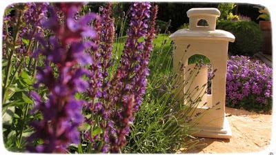 Rozświetlić ogród