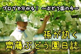 孫が訊く~齊藤ぶどう園日誌~