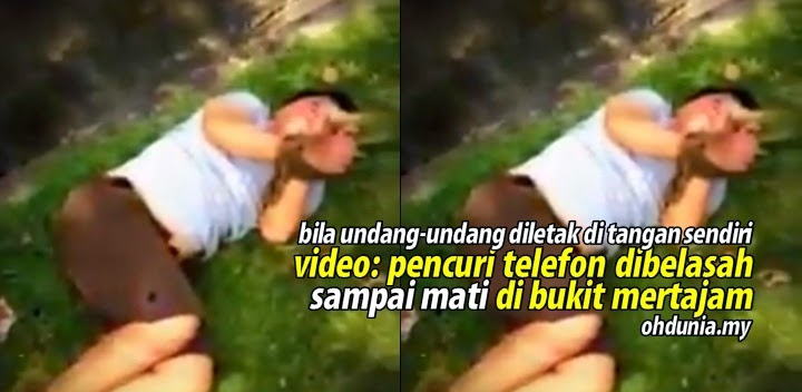 Video Pencuri Telefon Dibelasah Sampai Mati Di Bukit Mertajam Jadi Viral