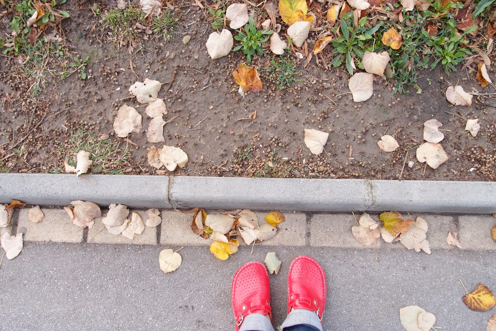 early autumn and almost bare feet