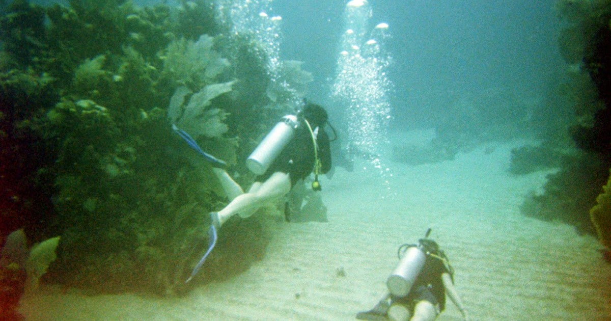 Life And Stuff Scuba Diving And The Art Of Ego Maintenance