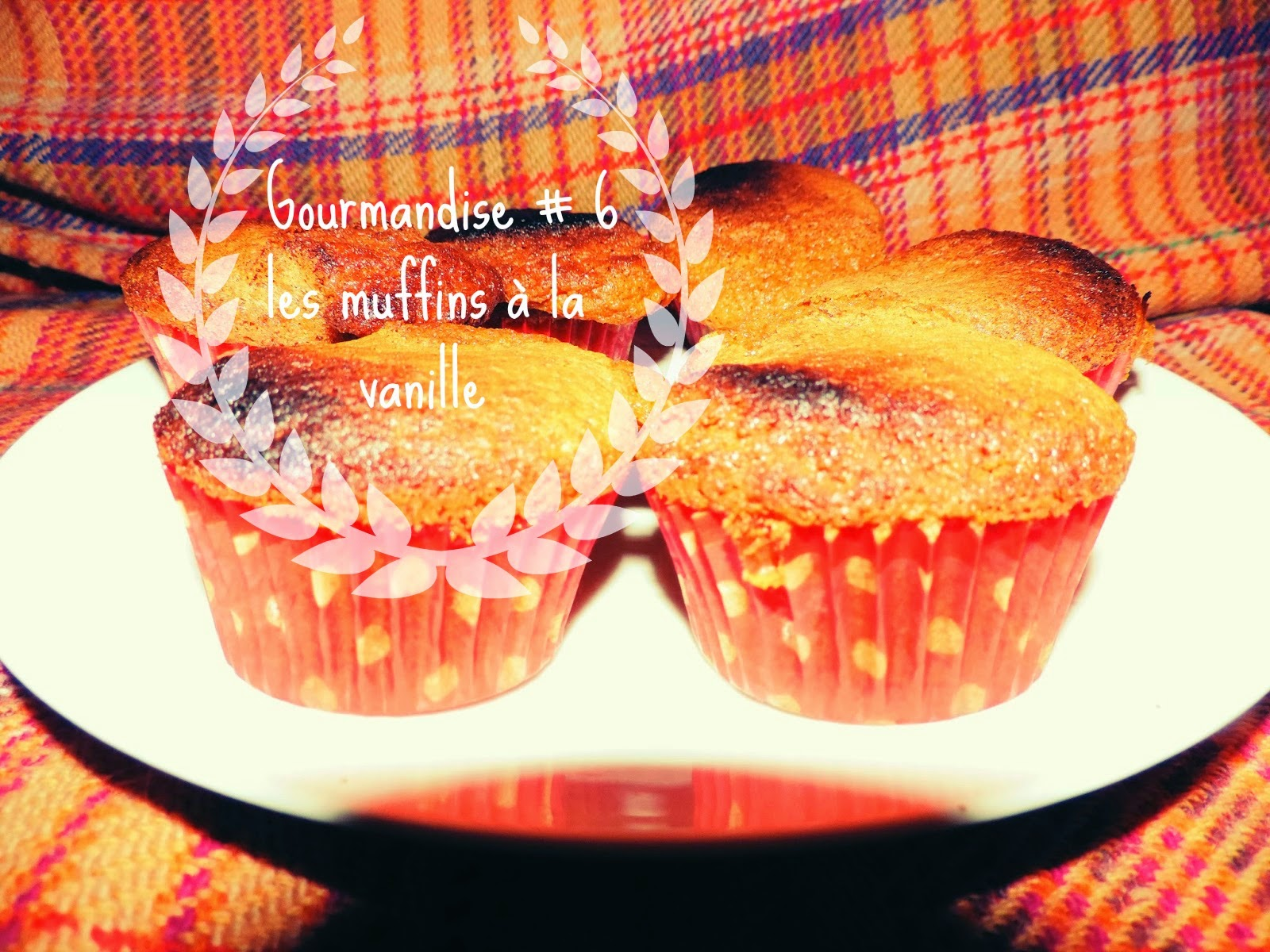 http://mynameisgeorges.blogspot.com/2014/03/gourmandise-7-les-muffins-tout-simple.html