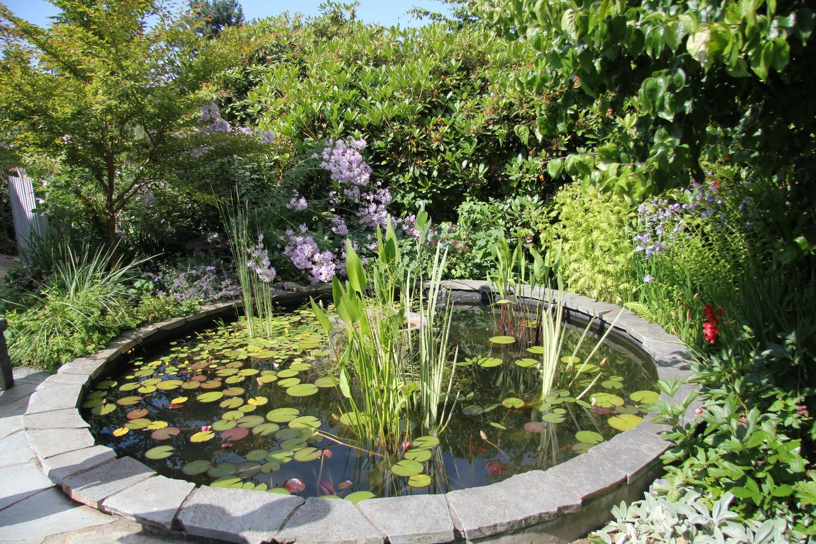 19 yard landscaping ideas pinterest the world s catalog of