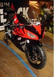 Gambar Foto Modifikasi Honda Tiger CBR1000.bmp