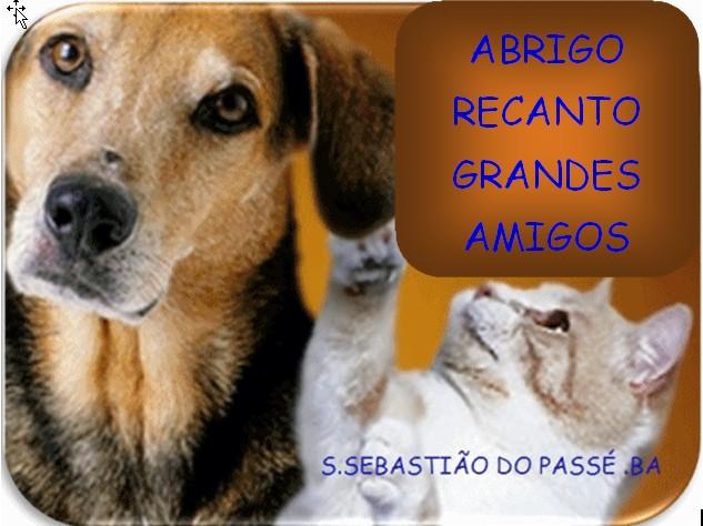 ABRIGO-RECANTO GRANDES AMIGOS S.SEBASTIÃO DO PASSÉ .BA