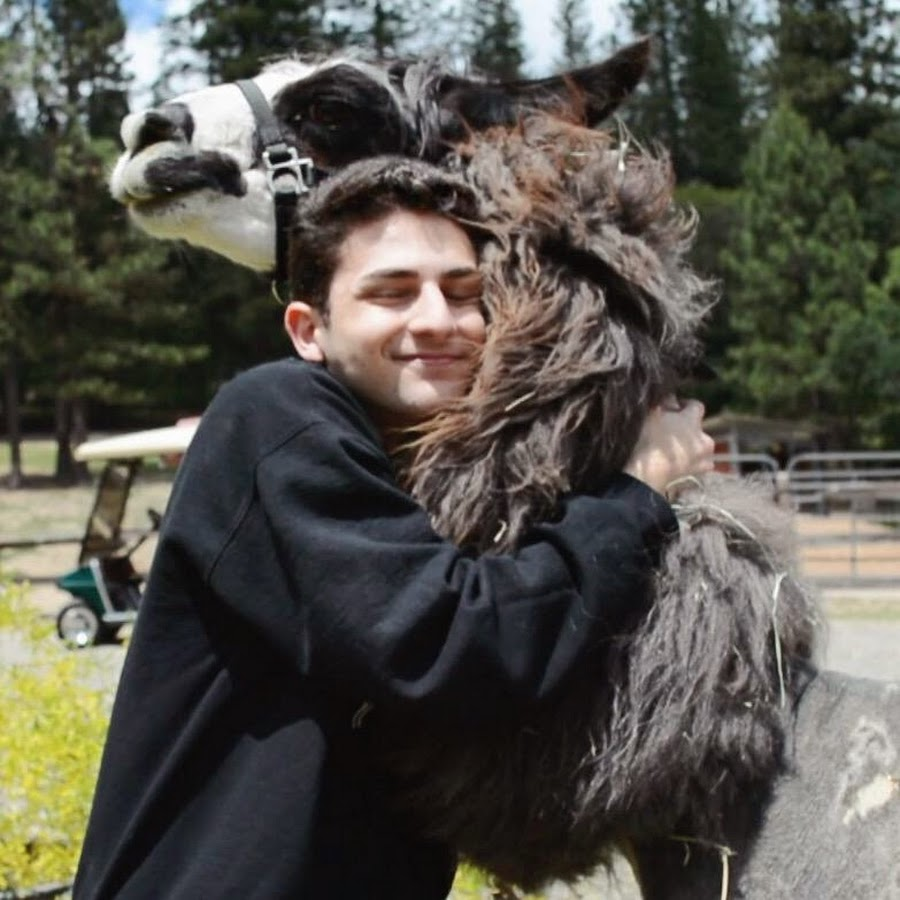 Twaimz is so cute! Can't wait to see what he does at #DigiFest2015 ...