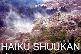 CARPE DIEM's HAIKU SHUUKAN
