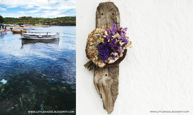Foto barca pescador y flores Portlligat