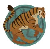Zodiac Chinezesc Tigru