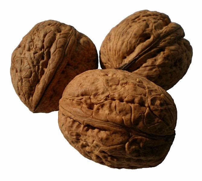 Top 10 Health Benefits of Walnut